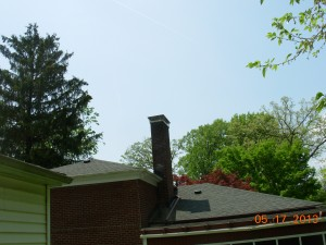 Chimney Cap Raccoon Prevention