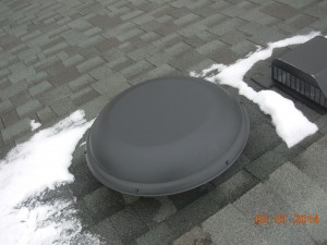 squirrel breached attic fan