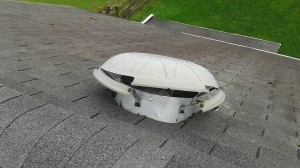raccoon damaged roof vent