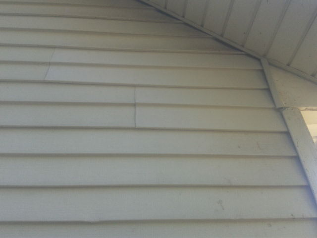 Can Squirrels Chew Through Siding Squirrel Damage And