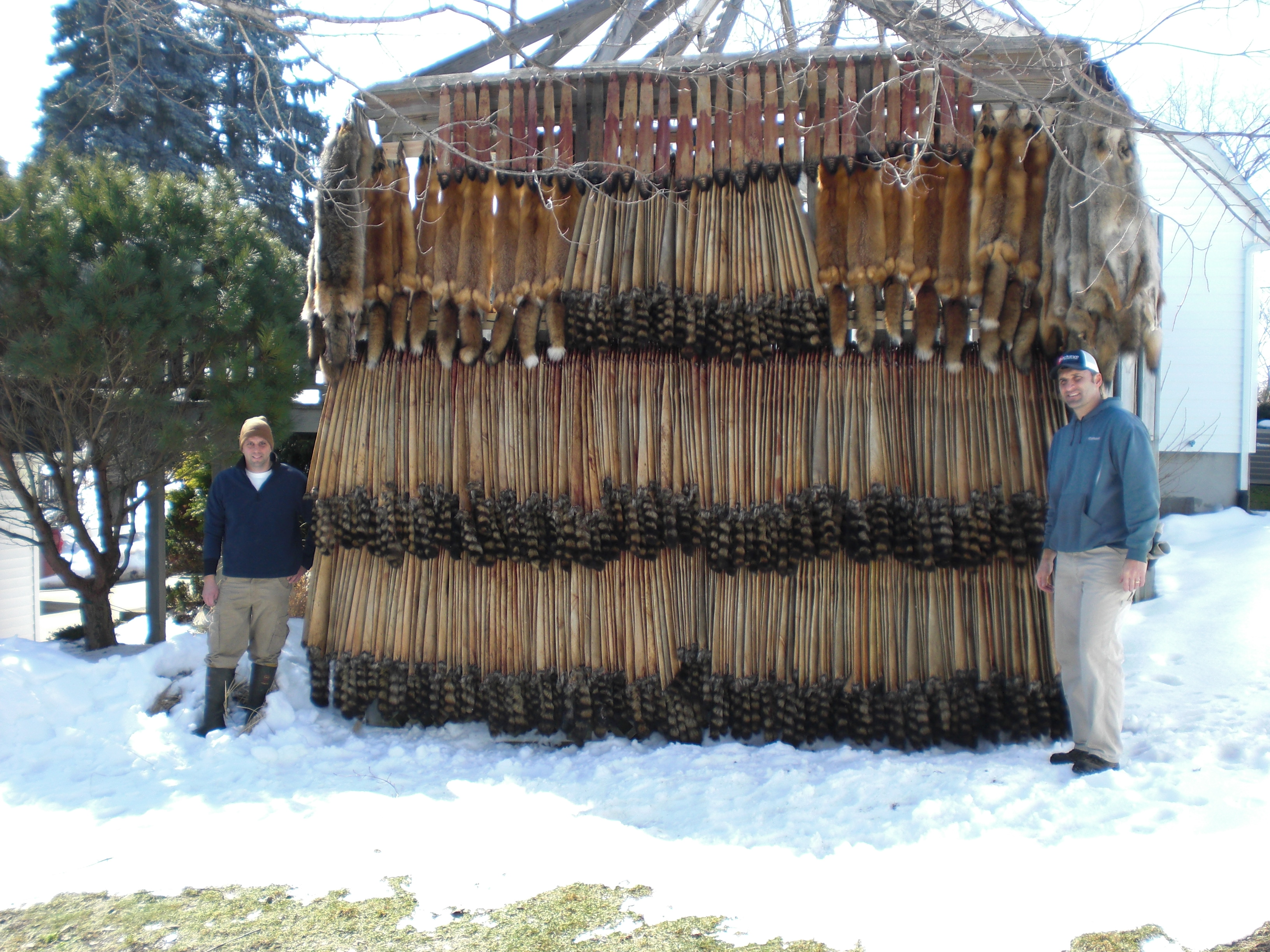 The Making Of A Nuisance Trapper Brian Briggs Ohio Trapper